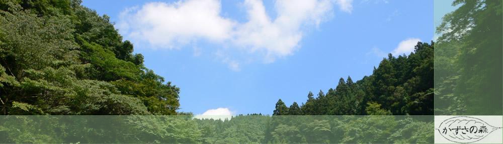 森林塾かずさの森